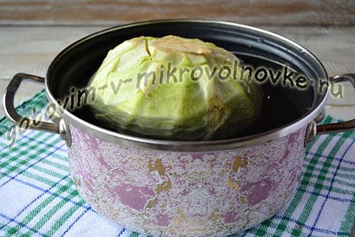 golubcy-recept-poshagovo-s-foto-1